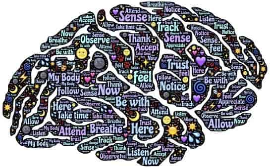 Create a mind map to fast learning.